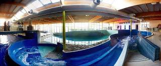 accessoire piscine hainaut