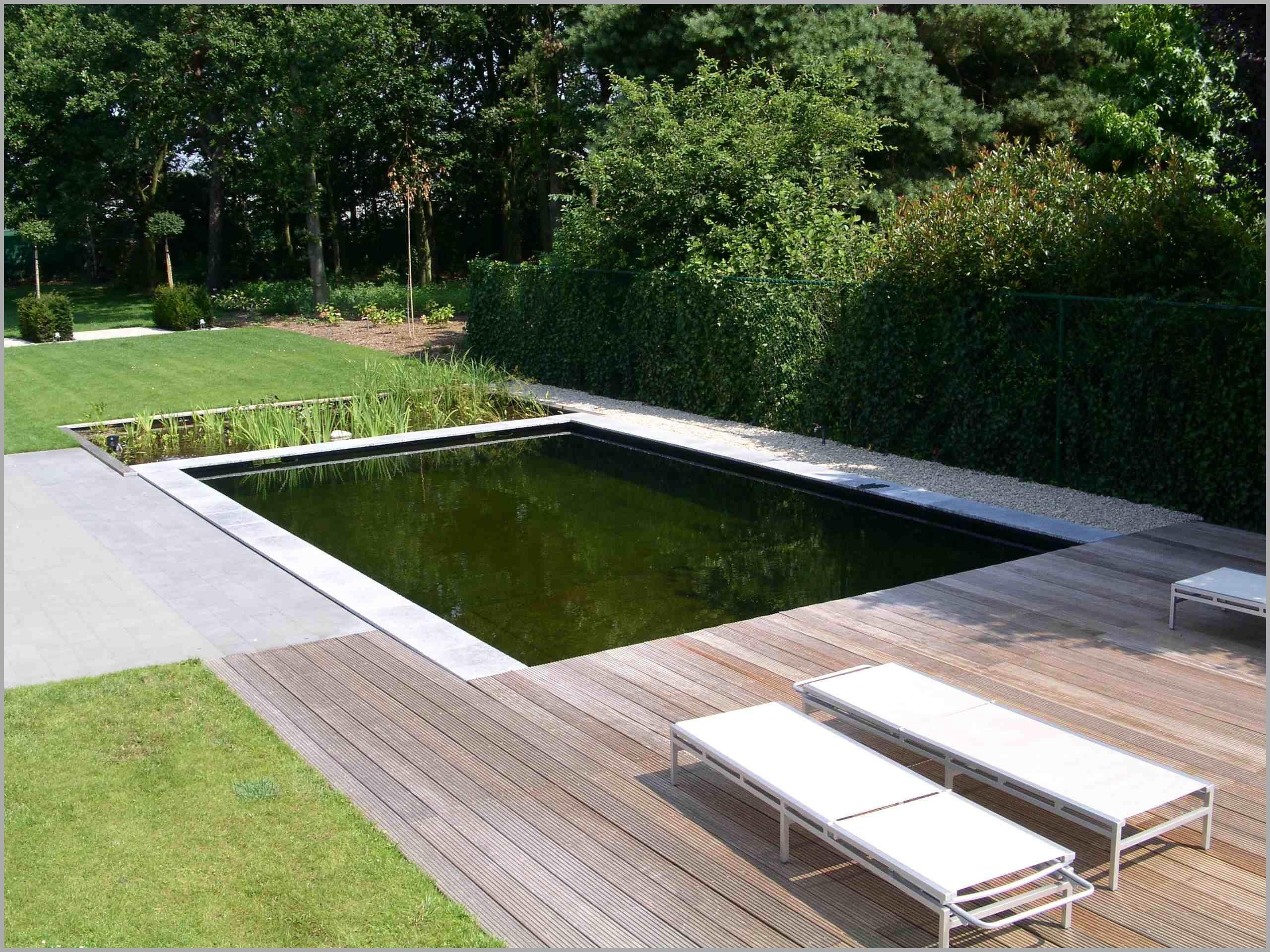 accessoire piscine naturelle