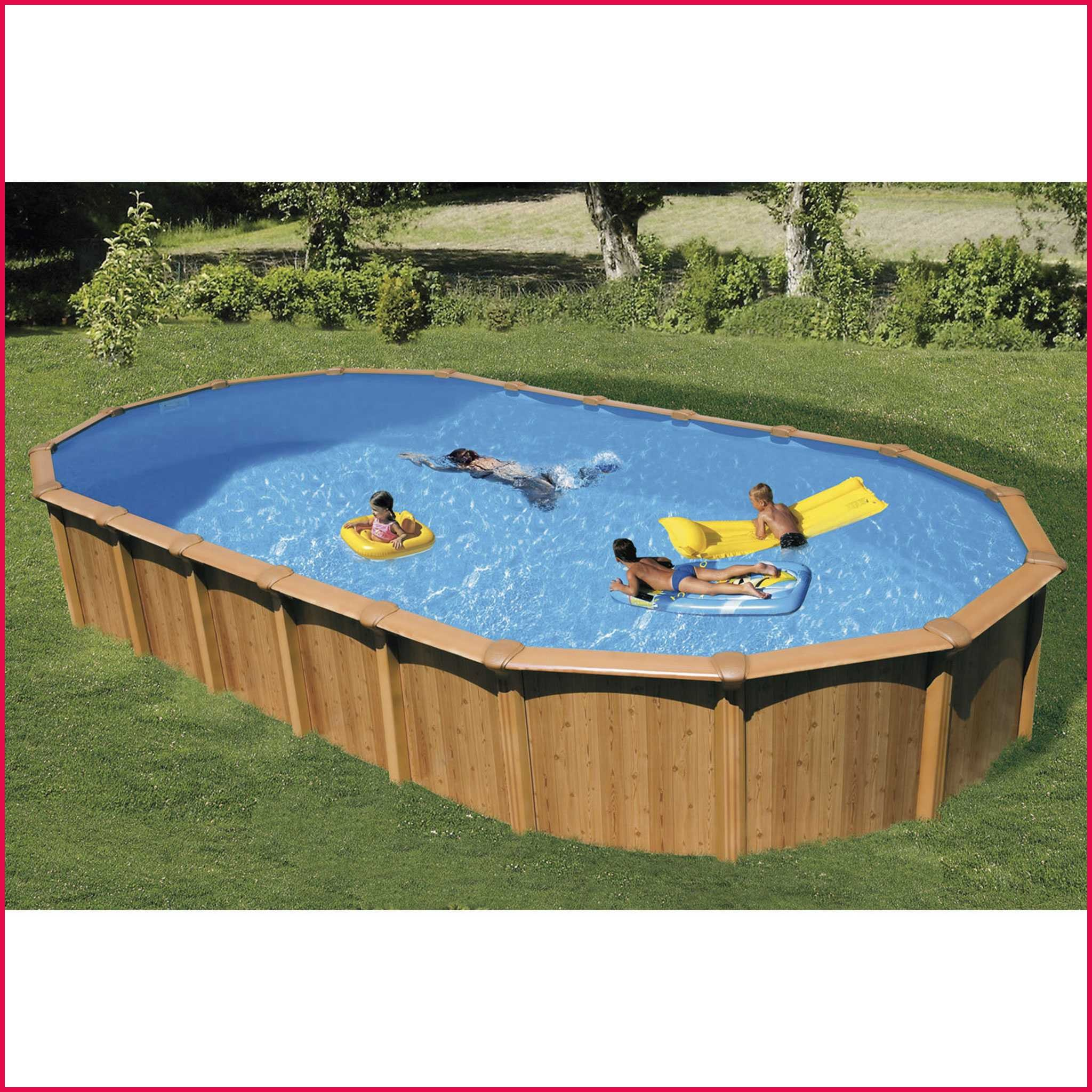 aspirateur piscine hors sol auchan
