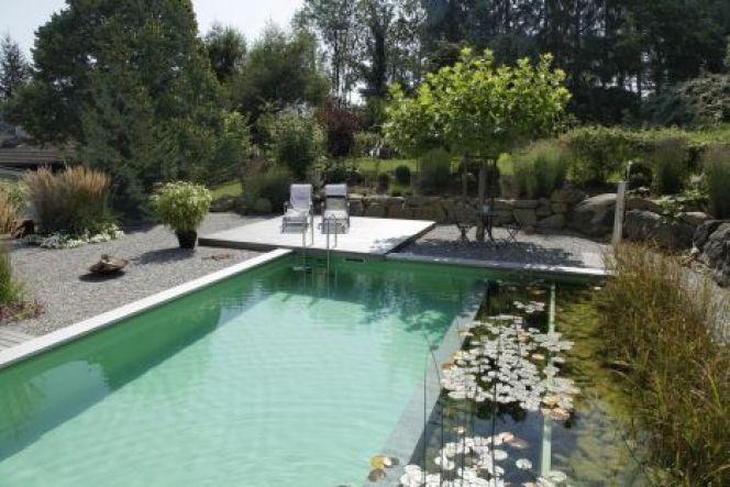 filtration piscine naturelle