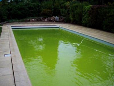 Filtration piscine verte - Comment recuperer eau trouble piscine ...