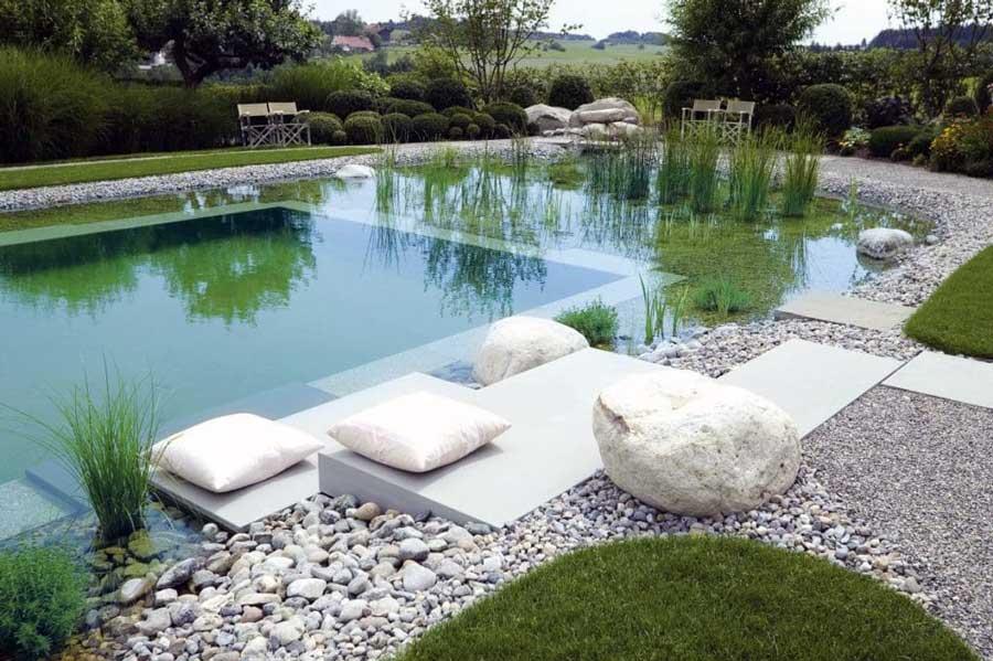 alarme piscine naturelle