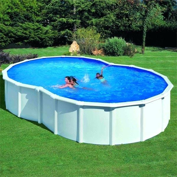 Aspirateur piscine electrique castorama - Aspirateur piscine electrique manuel ...