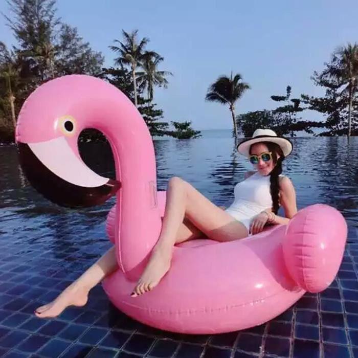 aspirateur piscine flamingo