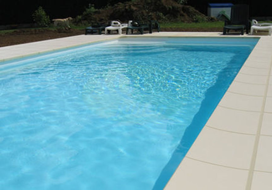 aspirateur piscine julien