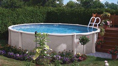 aspirateur piscine trevi